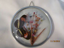 Vintage Authentic Butterfly and Dried Flowers in Encaded in Glass Wall Decor