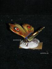 +# A005746_17 Goebel Archiv Muster Schmetterling Butterfly Falter Papillon XP608