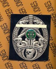 US Army 2 Bn 10th Special Forces Group Airborne OIF Iraqi Freedom beret badge