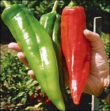 """New listing Farm Raised Organic Non-Gmo """"Monster"""" Chile Pepper Seeds Spicy And Hot"""