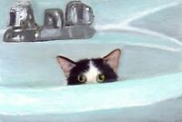 BCB Alfalfa Tuxedo Kitten Hiding in Sink Print of Painting ACEO 2.5 X 3.5 Inches
