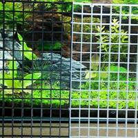 Multifunktionales Aquarium Isolation Tray Gitter Trennplatte Filtergitter