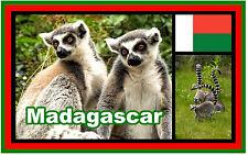 MADAGASCAR - SOUVENIR NOVELTY FRIDGE MAGNET - NEW - GIFT