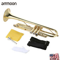 Profession Trumpet Bb B Flat Brass Gold w/Mouthpiece Strap Gloves Case Gift D7M6