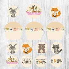 It's a Girl, Baby Shower Cupcake Wrappers and Toppers, Woodland Theme, Baby Girl