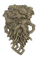 Iron Bearded Leaf Man Garden Face Plaque Wall Decor Lawn & Gardens Yard Art