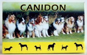 Canidon Dog Dewormer Wormer -100 % Effect - 50,100 or 200 tablets