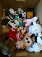 LOT OF 13 Assorted Random TY STEPHAN BABY CRUNCHIMALS Toy Plush, small med EUC