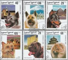 Sáhara usado 2000 perros