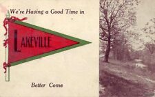 WE'RE HAVING A GOOD TIME IN LAKEVILLE, NY BETTER COME 1912 PENNANT CARD