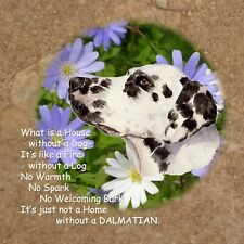 DALMATIAN DOG GLOSSY HARDBOARD NEW PLAQUE TILE SANDRA COEN ARTIST WATERCOLOUR