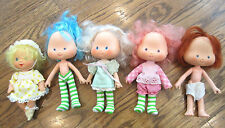 Strawberry Shortcake Lot of Dolls and Clothes