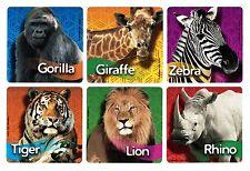 12 Wild Zoo Jungle Safari Animal Stickers Kid Party Goody Loot Bag Favor Supply