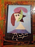 Picasso Assumed rare hard cover book