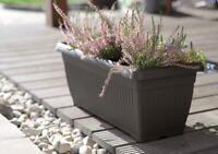 Black Corinthian Trough Planter Terracotta Durable Plastic Flower like Stewart