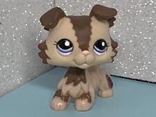 Littlest Pet Shop Collie #2210 LPS Brown Cream Collie Puppy Dog Blue Eyes