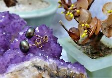 9CT YELLOW GOLD BUTTON STYLE BLACK FRESHWATER PEARL EARRINGS