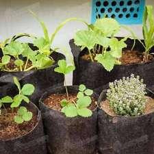 Root Pouch Biodegradable Plant Pouch / Bag / Liner / No Handles 8 Litre  #13E321