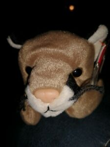 "Beanie Babies Ty , "" Canyon "" The wild cogar"