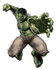 "The Hulk,Incredible Hulk,Logo,Heat Transfer,Iron On(9.5""x 7.5"")"