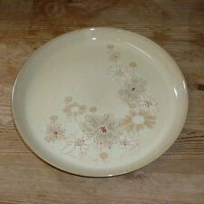Unboxed Denby Stoneware Dinner Plates