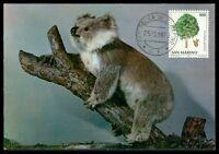 SAN MARINO MK 1979 FAUNA FLORA KOALA COALA CARTE MAXIMUM CARD MC CM am47