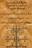 Banish All Bills Voodoo Prayer Ritual Kit Money Debt Healing Savings Credit Card