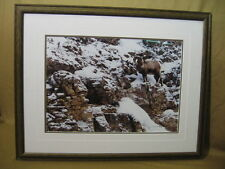 "1997 Thomas Mangelsen ""The Climb"" 73/1200 Signed Bighorn Sheep 28 1/2"" x 29 1/2"""