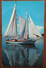 Sail Boat On Calm Water w/ People Postcard