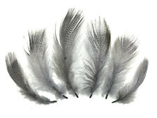 1 Pack Platinum Gray Mallard Duck Flank Barred Feathers 0.10 Oz Craft Jewelry