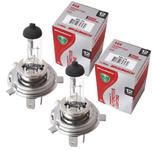 Headlight Bulbs Globes H4 for Renault Kangoo Express X61 Express 1.6 16V 2008-20