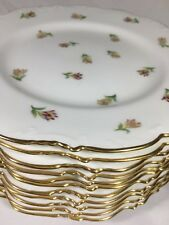 (11)  Royal Cauldon 'SCATTERED TULIPS' 9 Inch Luncheon Plates - K7986