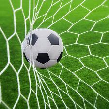 24x8ft Football Full Size Soccer Goal Post Net Straight Flat Sport 7.3x2.4m  M0Q