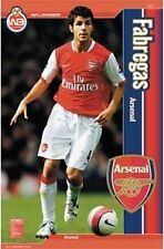Arsenal WALLBANGERS Wallbanger Fabregas - Poster