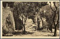 ARLES Bouches-du-Rhone ~1920 Promenade de la Lice CPA