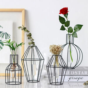 Geometric Glass Vase Metal Line Abstract Flower Plant  Nordic Style Home  ~