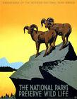"""Vintage National Parks WIldlife Poster *FRAMED* CANVAS PRINT USA 16""""x12"""""""