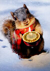 Snowy Squirrel Holds Candle Box of 10 Christmas Cards - Greeting Card by Avanti photo