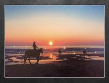 LED Wandbild Pferde am Strand Leuchtbild 40 x 30 cm