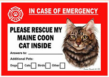 Maine Coon Brown Tabby Cat Pet Savers Emergency Rescue Window Cling Sticker
