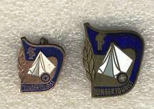 Set of 2 two East Germany German Boy Scout pin badge JP Pioneer Young  Tourist