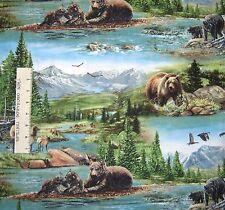 Nature Fabric - Bear Meadow River Mountain Scene - Wilmington YARD