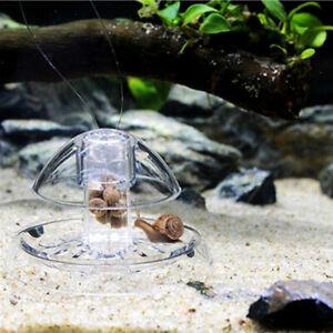 Aquarium Fisch Tank Fänger Falle Trapper für Planarien und Schnecken ( 3