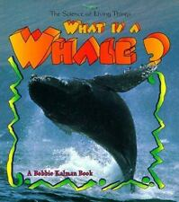 What is a Whale? The Science of Living Things