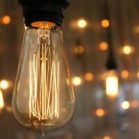 4 Pack - 60 watt Vintage Edison Bulb - Squirrel Cage Filament - 120 volts -