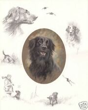 FLATCOATED RETRIEVER DOG LIMITED EDITION PRINT by the late Mick Cawston - FCR