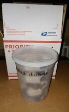 New listing 200 Medium/Large dubia roaches/Hand Counted/shipped in plastic cup