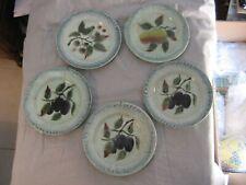 Beau lot de 5 assiettes en barbotine à décor de fruits mûre, prune, pomme  1900