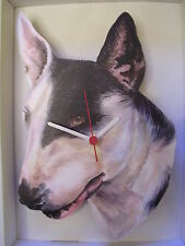 English Bull Terrier Dog Wall Clock. New & Boxed.Head Only