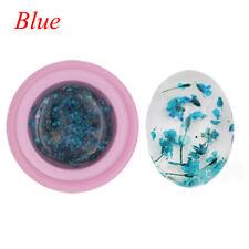 1 Bottle Natural Dried Flowers Series Nail UV GEL Polish DIY Manicure Decoration Blue